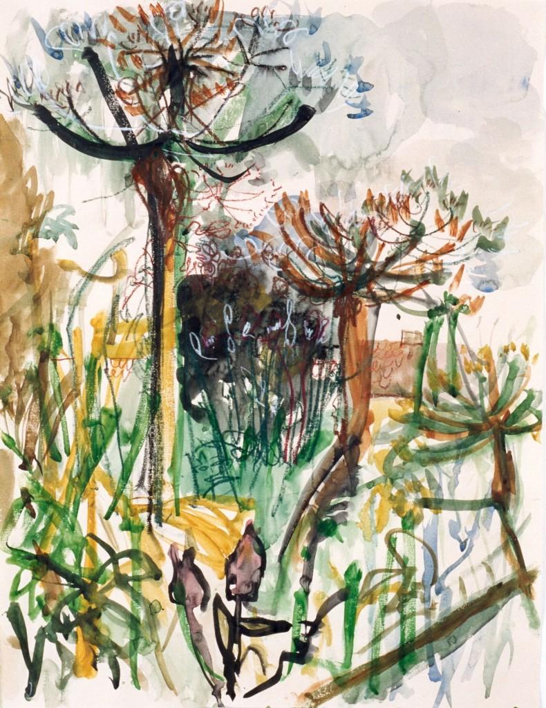 Berenklauwen, 2000 (aquarel op papier, 73 x 53 cm)